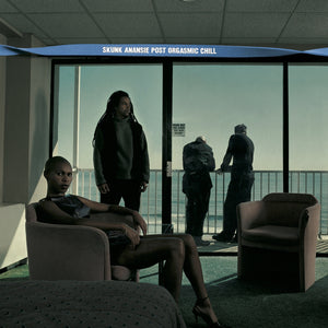 Post Orgasmic Chill (LP) | Skunk Anansie Official Store