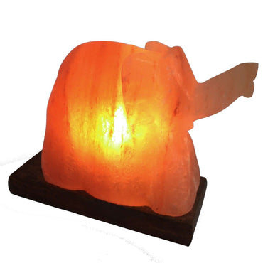 Elephant Shaped, Himalayan Salt Lamp