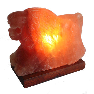 Lion Shaped, Himalayan Salt Lamp