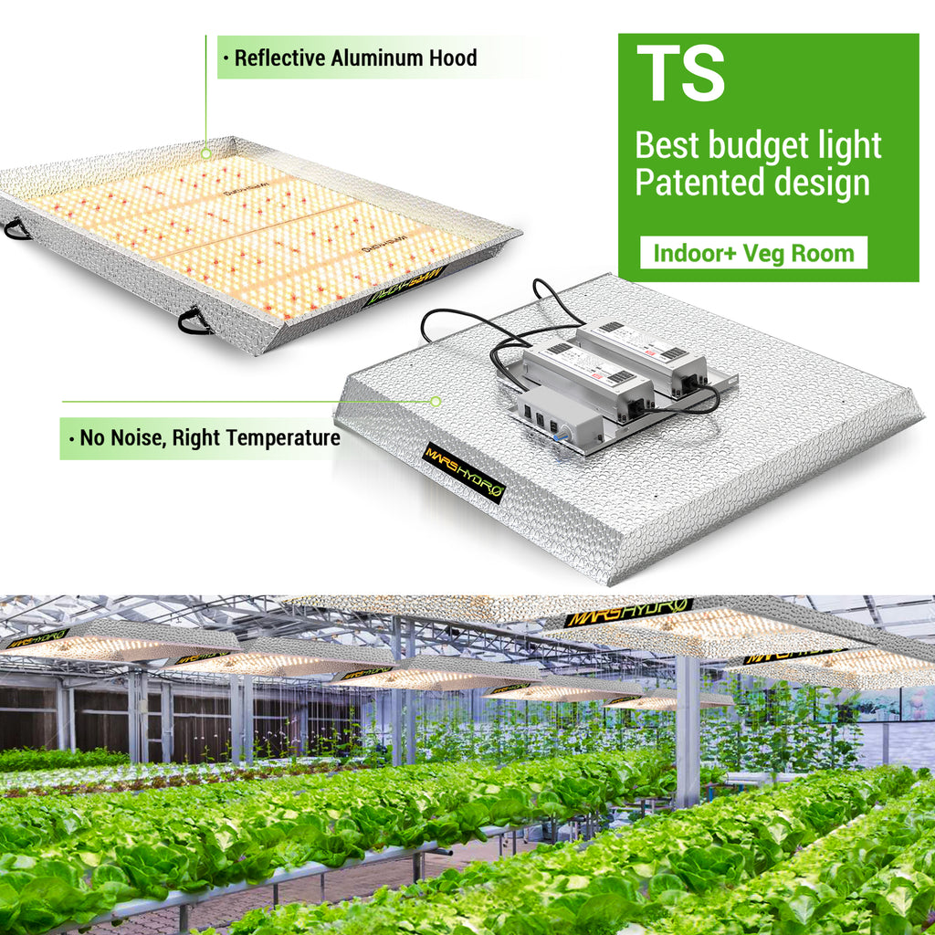TS3000 budget led grow light for commercial veg growing