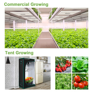 FC 3000 Led Grow Light Samsung Osram Commercial Greenhouse Medical Indoor Hydroponics Lamp
