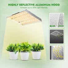 Load image into Gallery viewer, Mars Hydro TSW 2000 Led Grow Light+100x100x180cm Indoor Tent Full Grow Kits Veg Flower