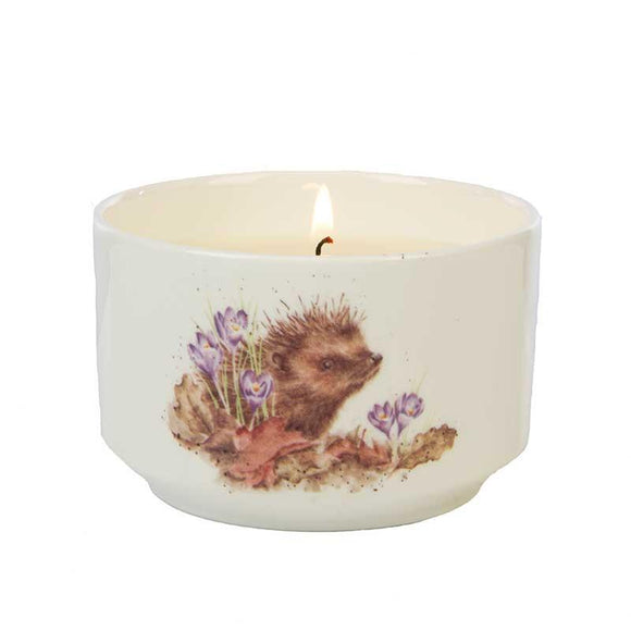Wrendale Hedgehog Illustration Ceramic Trinket Jar Candle Woodland - Caths Direct