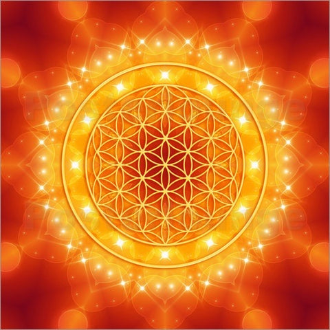 9/9 Portal: The Golden Ray of Consciousness Webinar