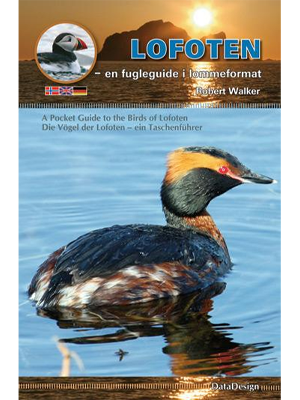 Lofoten -en fugleguide i lommeformat (Bind I) - A Pocket Guide to the Birds of Lofoten (Volume I)