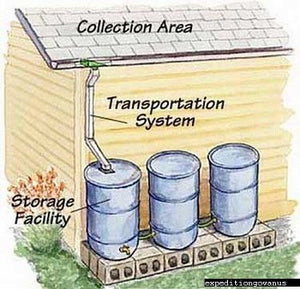 How to Collect and Use Rainwater
