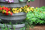 Load image into Gallery viewer, Vertical Garden - Good Ideas | English Composting Garden