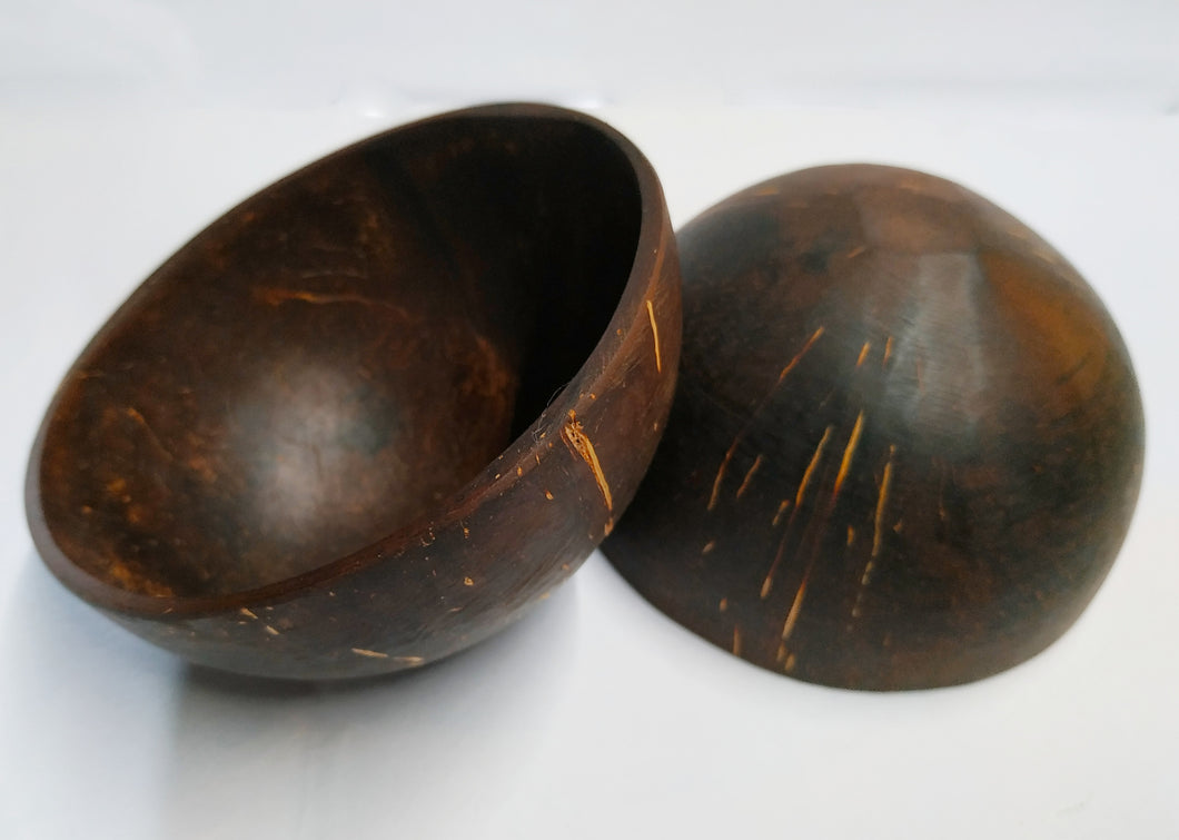 COCONUT SHELL FOOD BOWL