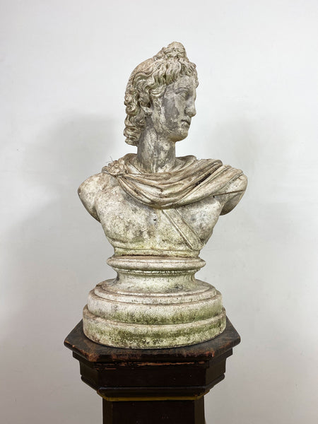 Weathered Stone Bust of Apollo