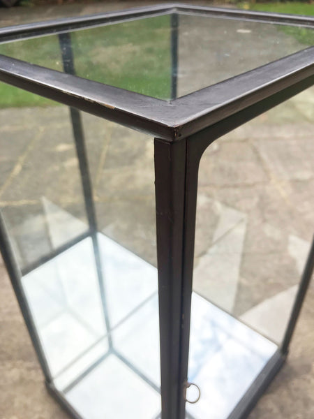 Ebonised Mirror and Glass Display Case