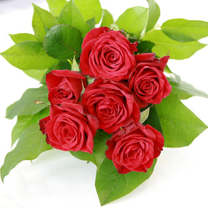 Valentines Day 6 Red Roses