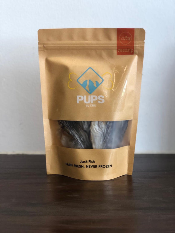 Fish 1 Pack - 90 grams