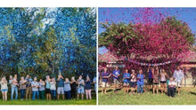 Load image into Gallery viewer, Gender Reveal Confetti Cannon