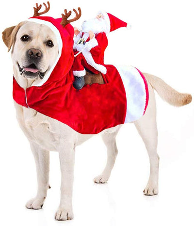 Cute Pet Christmas Costume - Wish Tricks