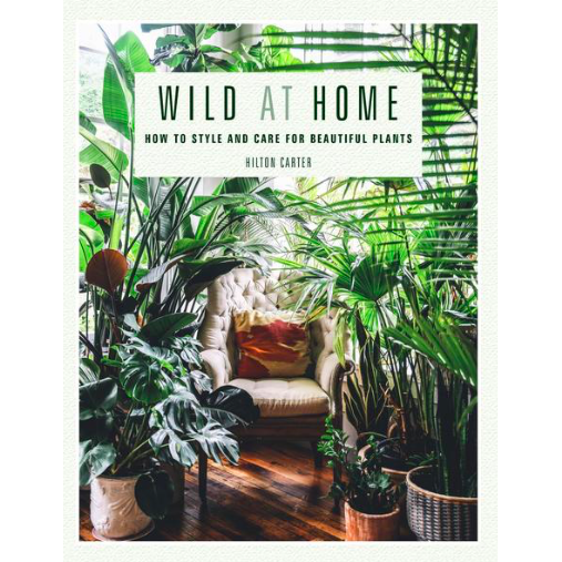 Wild at Home - Hilton Carter