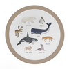 Sebra Plates - Birds, Arctic and Dino