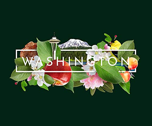 Washington: The Evergreen State (Book)