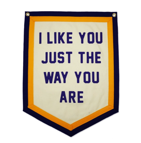 I Like You Just The Way You Are Camp Flag