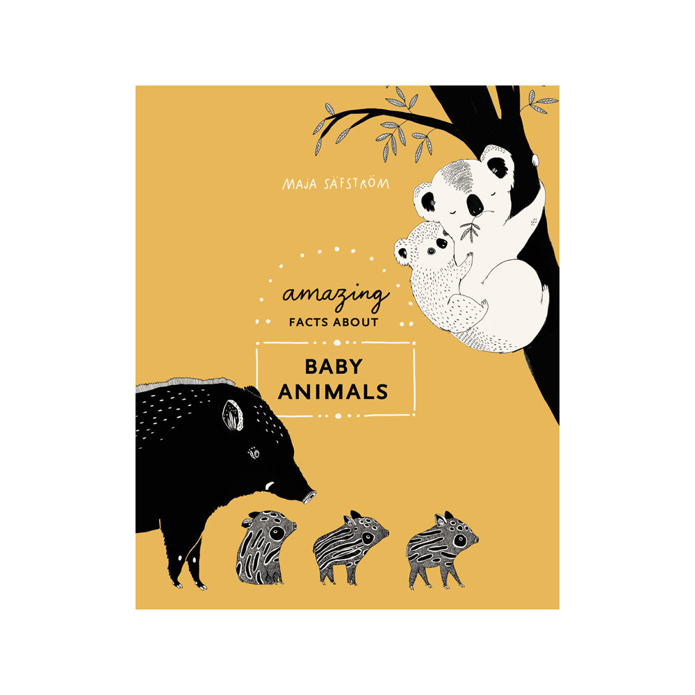 Amazing Facts About Baby Animals (Book)