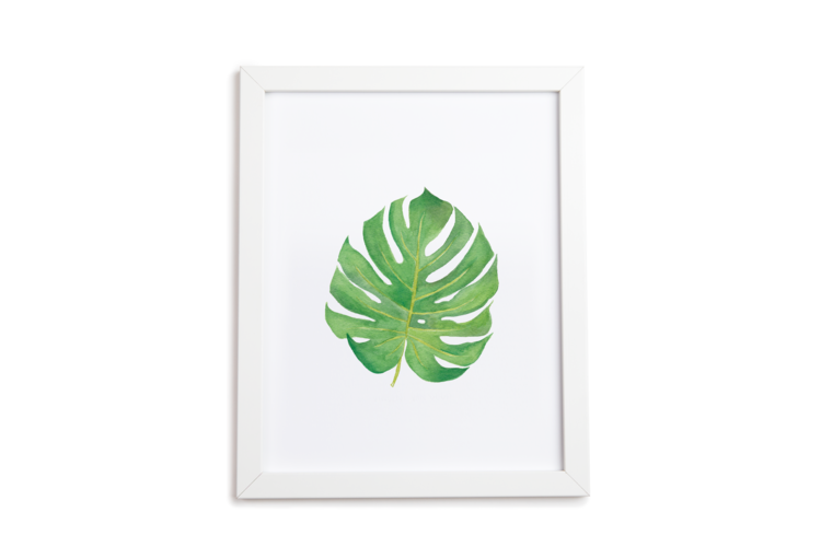 Monstera Art Print