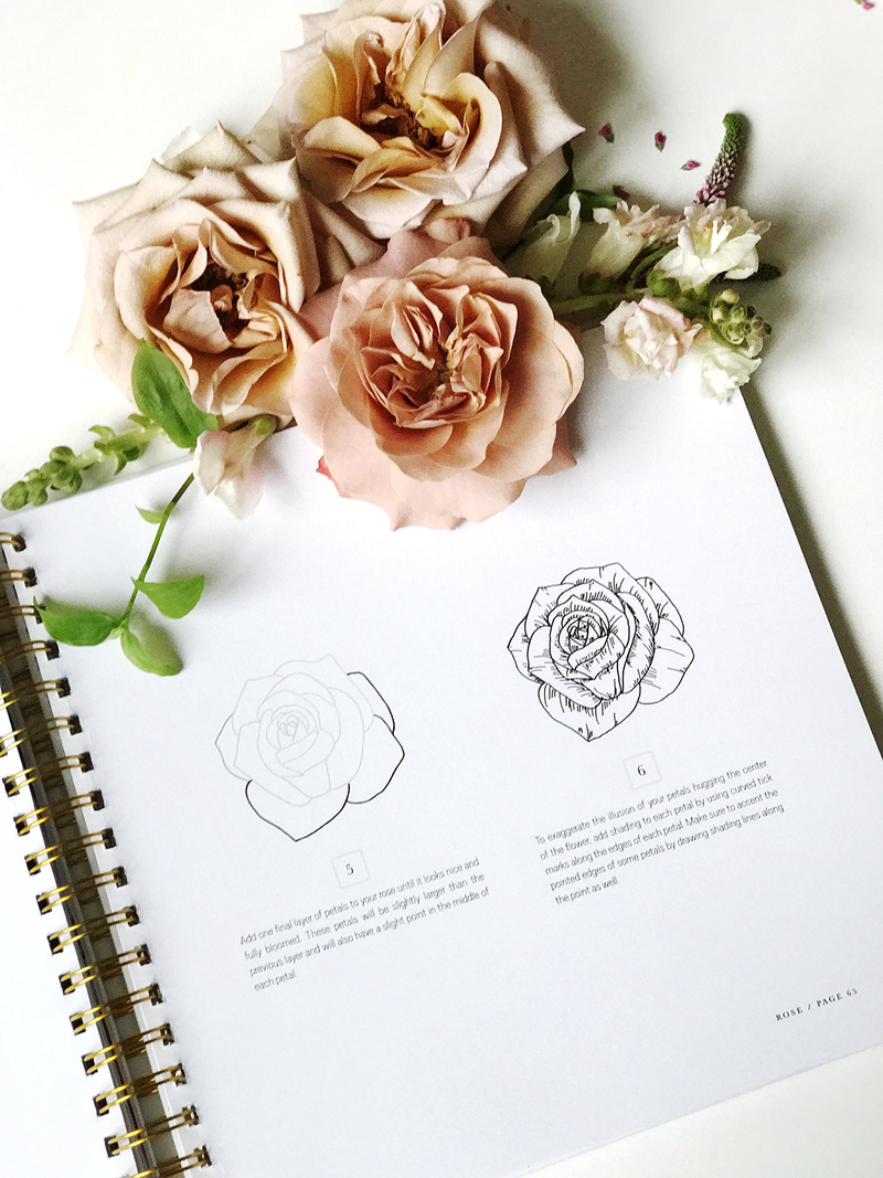 How to Draw Modern Florals (Book)