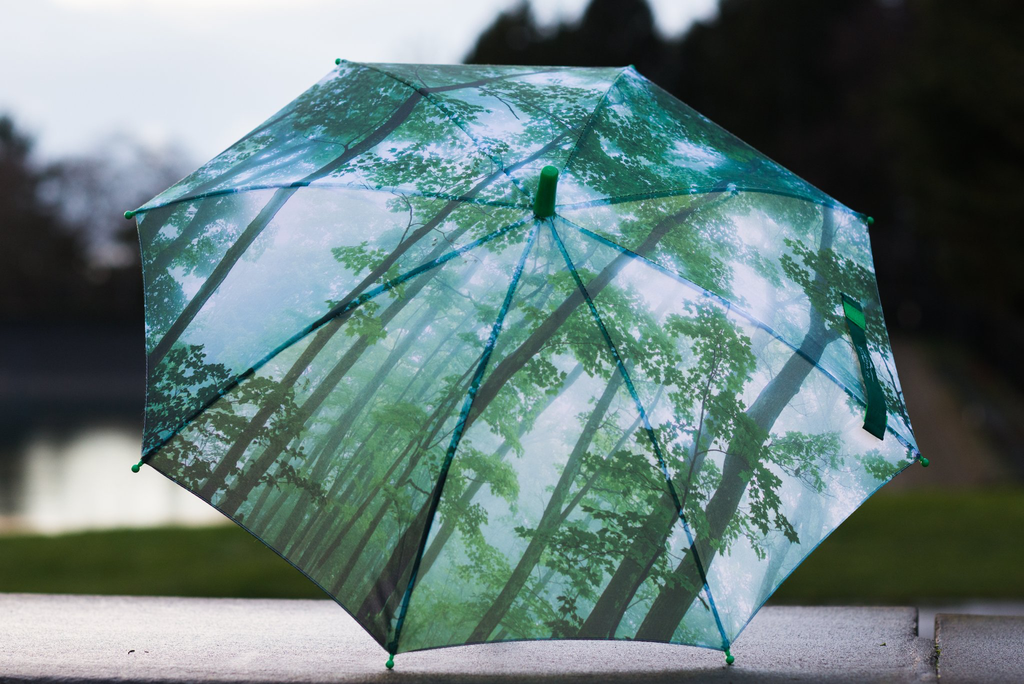 Misty Woods Kids Umbrella