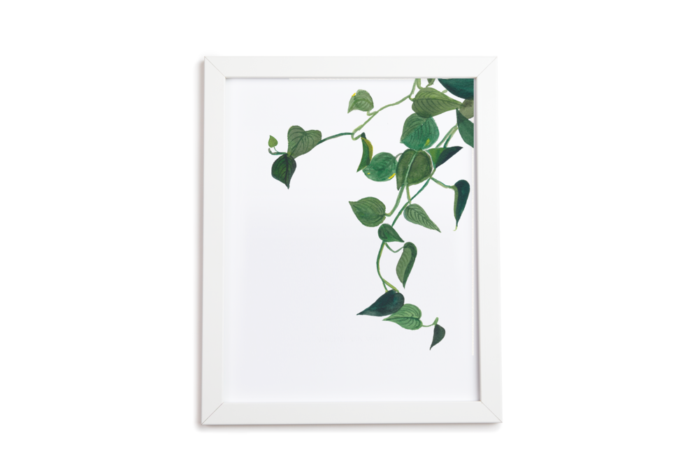 Pothos Leaves Art Print