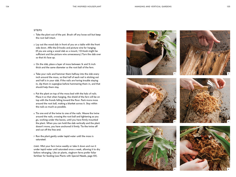 The Inspired Houseplant (Book)