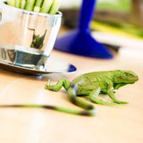Safari Ltd Baby Iguana Miniature