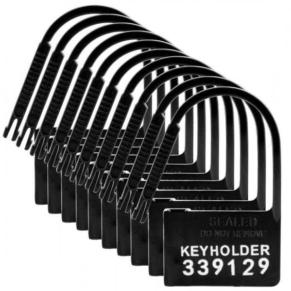 10 Pack of Locks for Chastity Devices - KinkyDiva