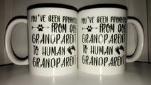 Load image into Gallery viewer, Pregnancy Reveal Mug| Promoted From Dog Grandparent To Human Grandparent