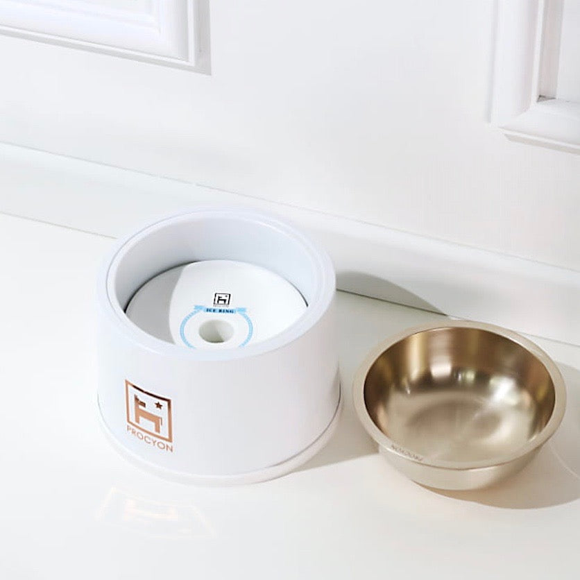 ※予約販売 【PROCYON】cooler bowl bronze(Glacier white)
