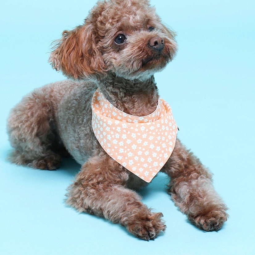 【scamper】FLOWER BANDANA(ORANGE)