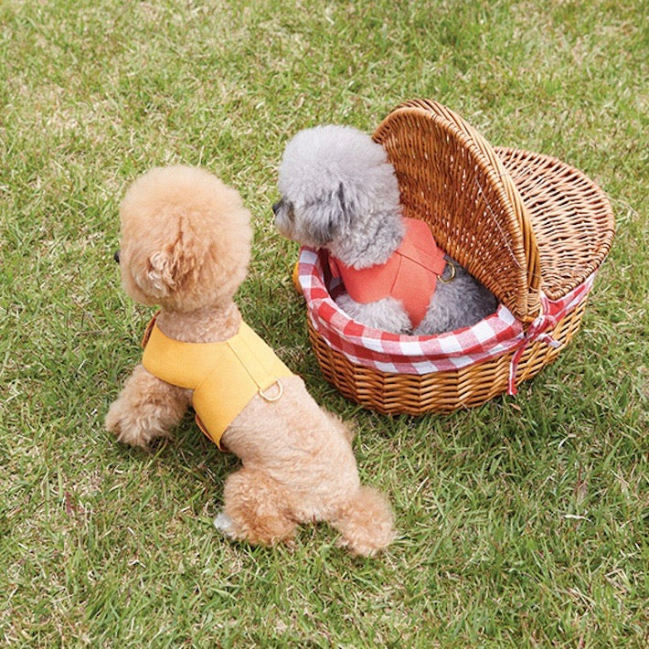※予約販売【BANDAL.Pet】ALL DAY NIZI HARNESS & LEAD (SET)(イエロー)