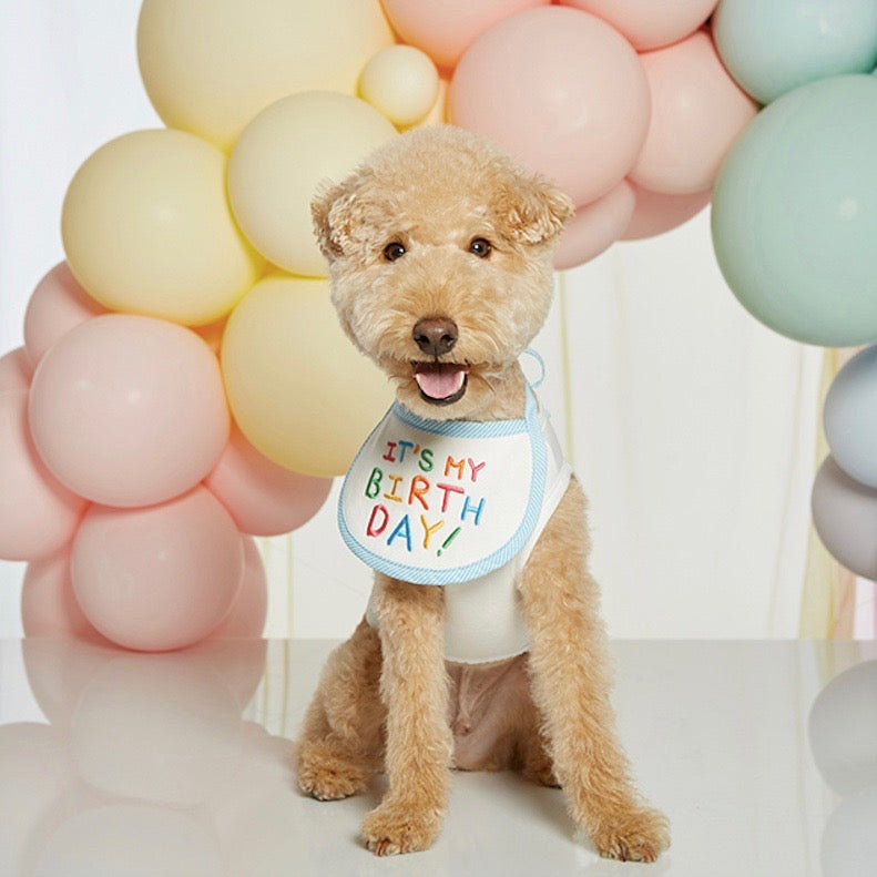 ※予約販売【LOVEMORE】IT'S MY BIRTH DAY BIB(ブルー)