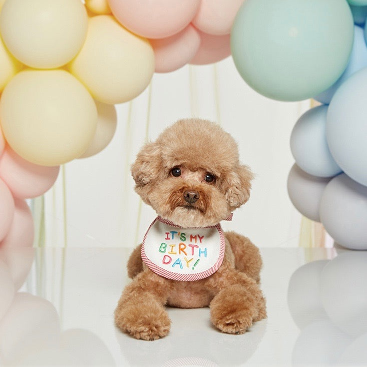 ※予約販売【LOVEMORE】IT'S MY BIRTH DAY BIB(レッド)