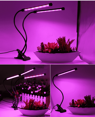 buy hydroponics LED lamp