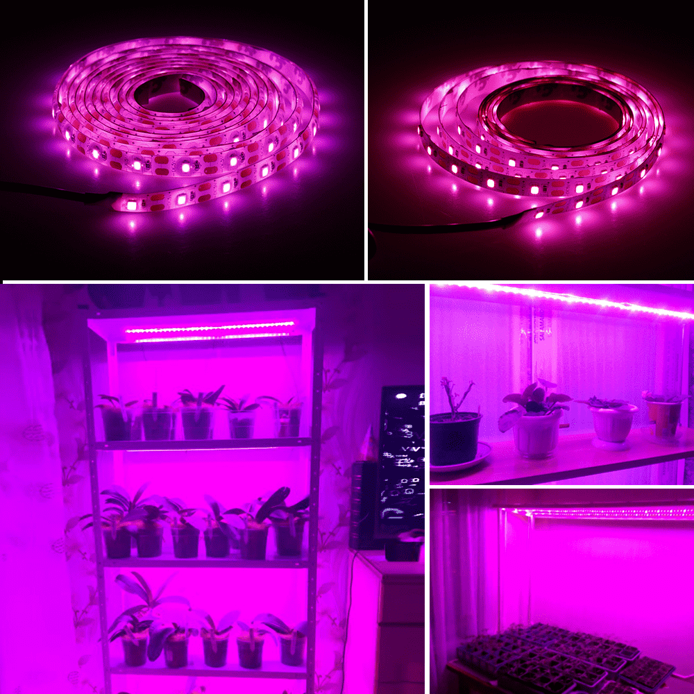 Buy full spectrum Hydroponic LED Grow Strips