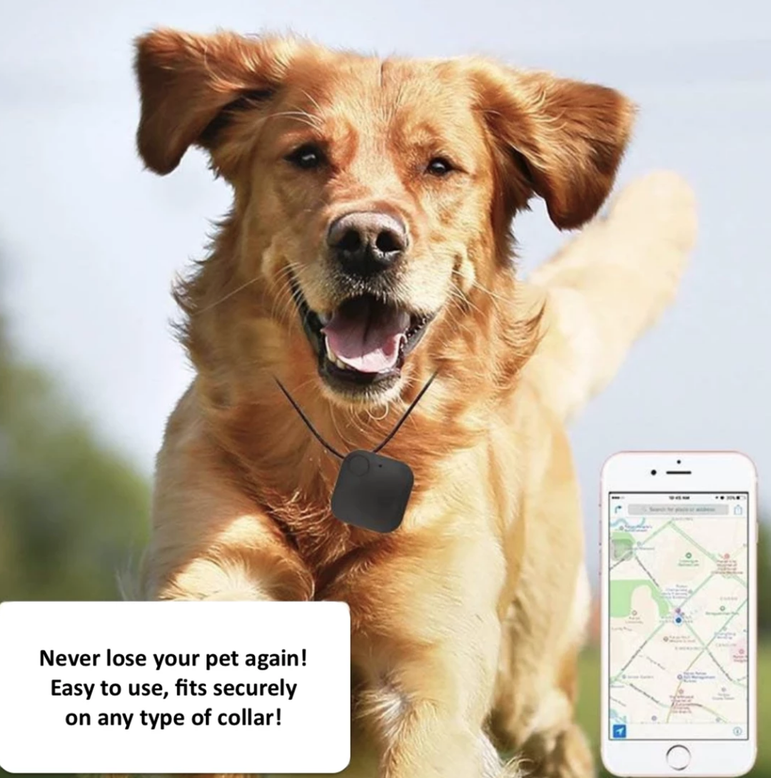 Pet Tracker with GPS