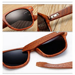 Andrias Sandalwood Collection - Wayfarer Round Series Wooden Sunglasses - Timbers Tint