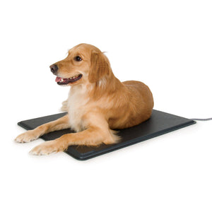 K&H Pet Lectro-Kennel Heated Pet Pad - Large