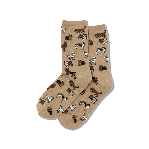 Women's New Arrival Socks