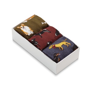 Men's 3-Pack Dog Socks Gift Box