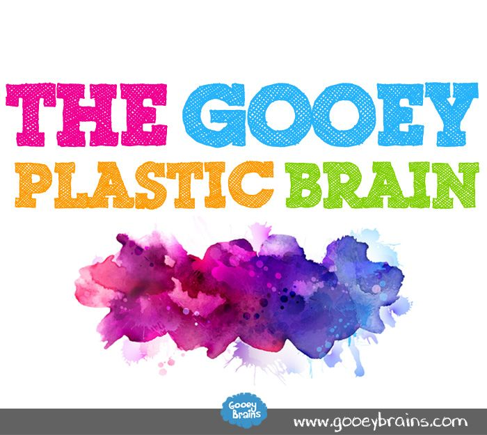 What is meant by the plasticity of the brain?