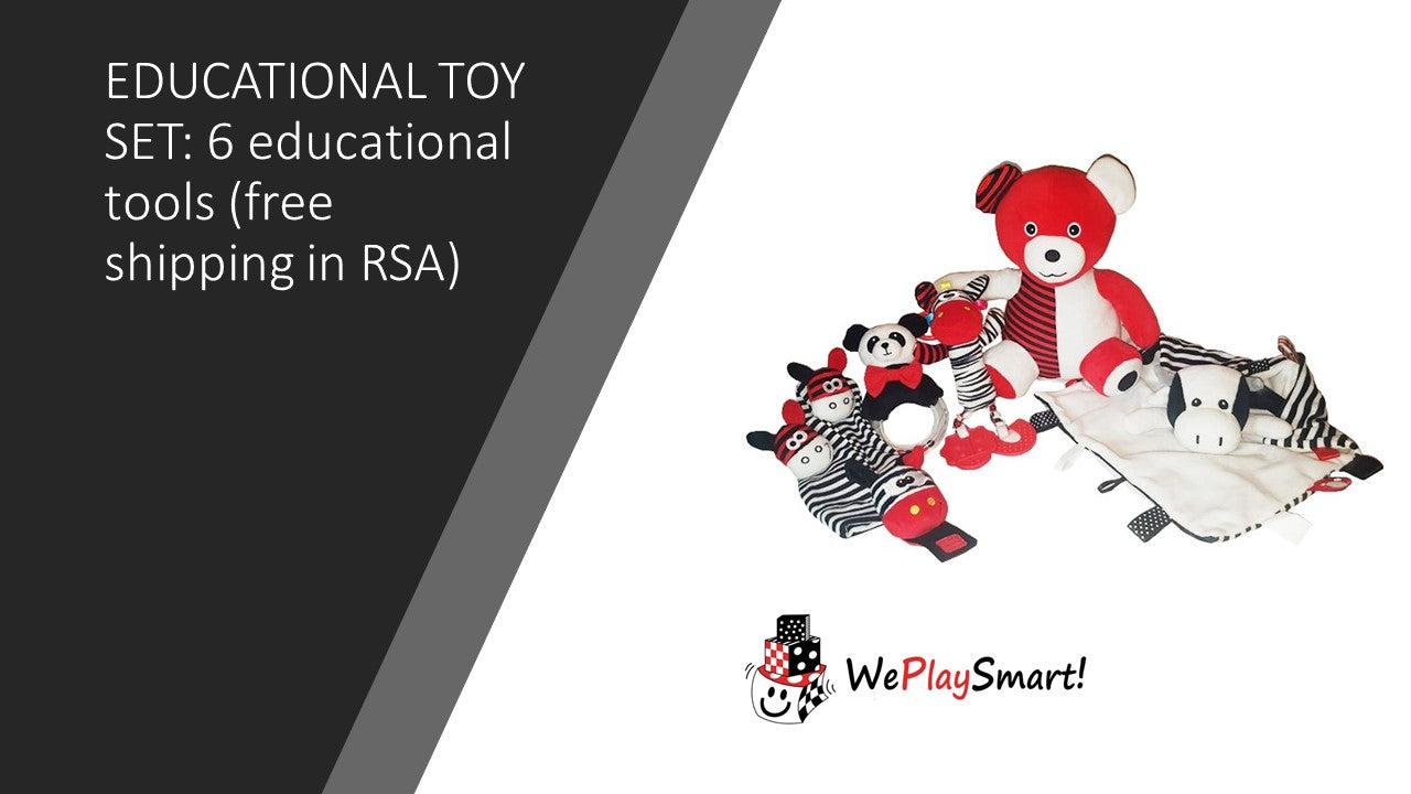 EDUCATIONAL TOY SET: 6 educational tools (free shipping in RSA) - Weplaysmart RSA