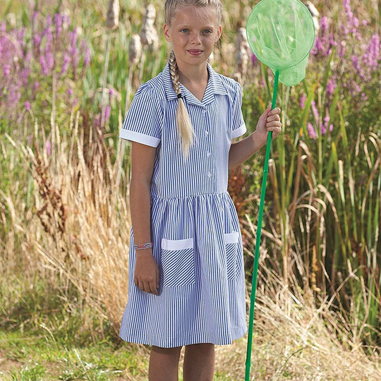 Blue Max Banner Junior Kinsale Button Front Corded Stripe Dress 913119 lifestyle image blue