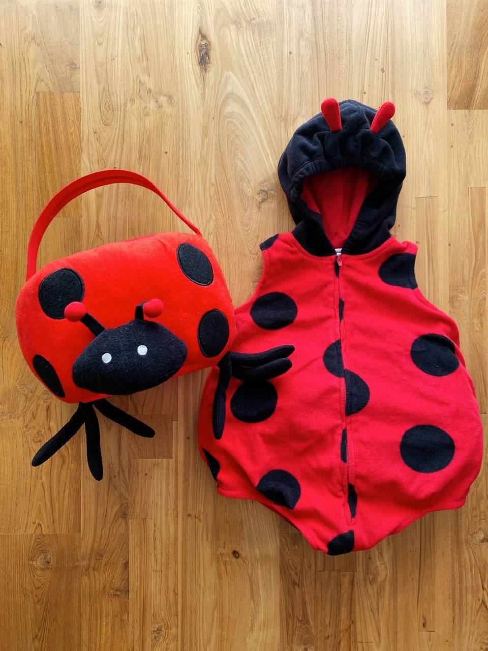 Carter's Little Ladybug Costume With Plush Halloween Treat Bag | 2y