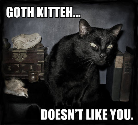 black kitty doesn't like you goth cat meme
