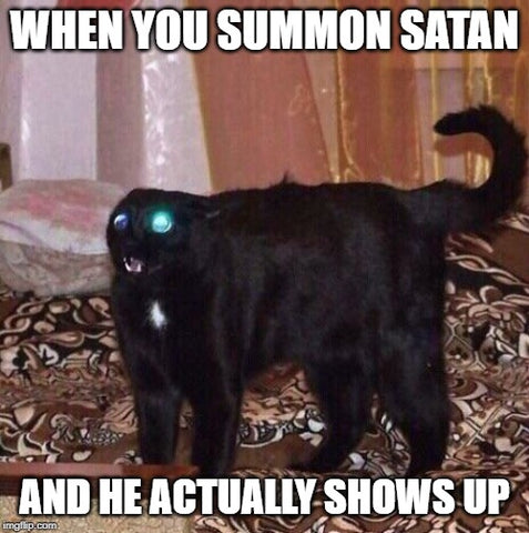 when you summon satan and he shows up goth cat meme