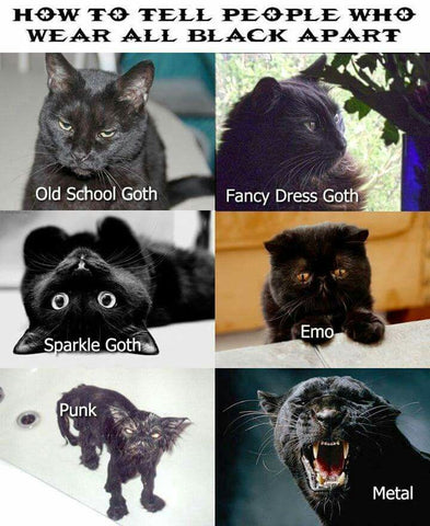 different types of goth cats meme